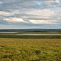 Район хребта Янганапэ, Ямал - panoramio (6).jpg