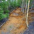 Самоизлив шахтных вод шахты Калинина, Губаха - panoramio (2).jpg
