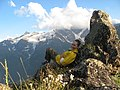 "Склы над п. Терскол, вид на г. Донгузорун (ледник ""7"" над головой), июль 2008 - panoramio.jpg"