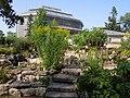 С.-Петербург - Ботанический сад 1.jpg