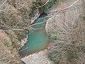 Тисо-самшитовая роща (река),1 км от Хосты вверх по течению реки, Хостинский район, Сочи, Краснодарский край.jpg