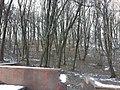 Урочище Шумейкове у Лохвицькому районі.jpg
