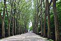 Франция - panoramio (13).jpg