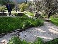 גבעת העמדות ברכס נשר ההיסטורי - שרידי רצפת ויסודות בית העם (2).jpg