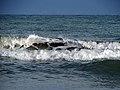 انرژی موج، ساحل دریای خزر، ساحل محمود آباد 10.jpg