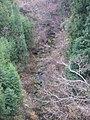 万沢 大沢川 - panoramio.jpg