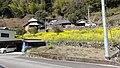 楮佐古 - panoramio (3).jpg