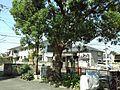 矢崎町 - panoramio (3).jpg