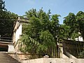 蒋经国的小洋房 - panoramio.jpg