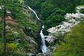 見帰りの滝 - panoramio - mahlervv.jpg