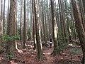 野馬瞰步道 Yemakan Trail - panoramio (2).jpg