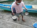 0016Hagonoy Fish Port River Bancas Birds 22.jpg