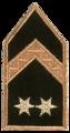 06törzsőrmester.png