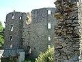07 Château de Ranrouët.JPG