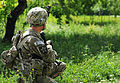 1-14th CAV provides support to ANP's clearance mission 120423-A-WI966-783.jpg