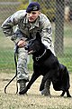 11th Security Forces Group Military working dogs 111130-F-MG591-095.jpg