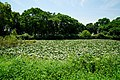 140712 German Village Park Naruto Tokushima pref Japan05s3.jpg
