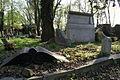 1412viki Cmentarz żydowski przy ul. Lotniczej. Foto Barbara Maliszewska.jpg