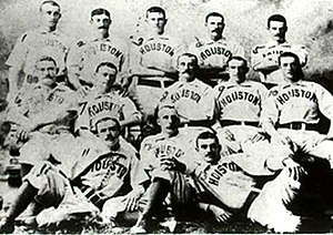 Houston Buffaloes - The 1889 Houston Mud Cats won the first Texas League pennant in Houston's history