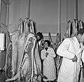 1958 visite d'une délégation INRA au Haras du Pin Cliché Jean Joseph Weber-45.jpg
