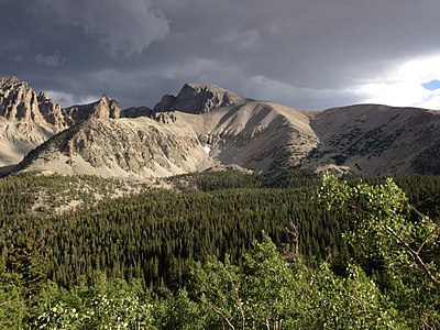 2013-07-14 18 50 54 View of Wheeler Peak and Engelmann Spruce forest from the Wheeler Peak Summit Trail in Great Basin National Park, Nevada.jpg