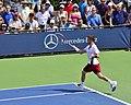 2013 US Open (Tennis) - Tim Smyczek (9677229992).jpg