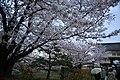 20160403 Himeji-Castle 3407 (26791739896).jpg