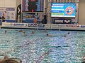 2016 Water Polo Olympic Qialification tournament NED-FRA 21.jpeg