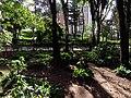 2017 Bogotá flores y árboles en el Parque de la Independencia.jpg