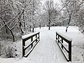 2018-03-21 12 59 14 View along a snow-covered walking path as it crosses a bridge in the Franklin Farm section of Oak Hill, Fairfax County, Virginia.jpg