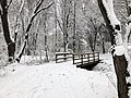 2018-03-21 13 01 59 View along a snow-covered walking path as it crosses a bridge in the Franklin Farm section of Oak Hill, Fairfax County, Virginia.jpg