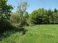 20180507315DR Bärwalde (Radeburg) Bauernteich.jpg