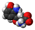 3-Hydroxy-L-kynurenine-zwitterion-3D-spacefill.png