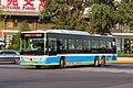 4834016 at Xiyuan (20191009162016).jpg