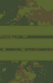 4sg.png