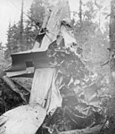 A-B-17-crashed-aircraft-associated-Kalmar-air-wing-352038883145.jpg