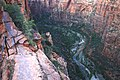 A262, Zion National Park, Utah, USA, Angels Landing trail, 2008.JPG