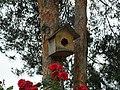 A nest box.jpg
