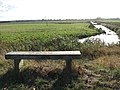 A seat with a view - geograph.org.uk - 1552623.jpg