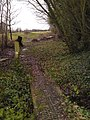 A track Into a soggy footpath - geograph.org.uk - 1640175.jpg