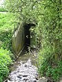 A tunnel carry a small stream under the A28 - geograph.org.uk - 1270586.jpg