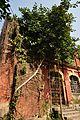 Acharya Jagadish Chandra Bose Indian Botanic Garden - Howrah 2011-01-08 9804.JPG
