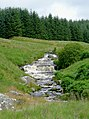 Afon Doethie Fawr near Blaendoethie, Ceredigion - geograph.org.uk - 1418897.jpg