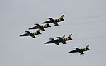 Airbatic team Baltic Bees.JPG
