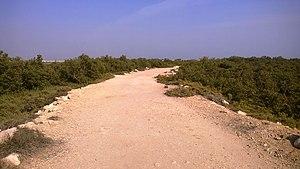 Al Khor Island - Dirt path in Al Khor Island.