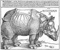Albrecht Dürer - The Rhinoceros - WGA7197.jpg