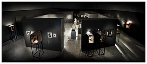 All Visual Arts - An installation shot of Charles Matton's Enclosures in 2011