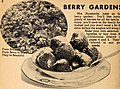 Allen's 1948 book of berries (1948) (17947708712).jpg