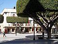 Almoradí. Ayuntamiento 1.JPG