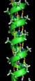 Alpha helix.png